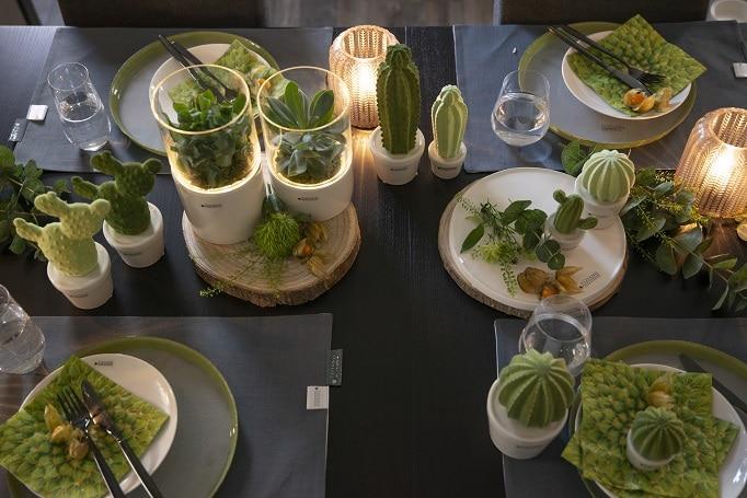 Tischdeko mit Kaktus und Co
