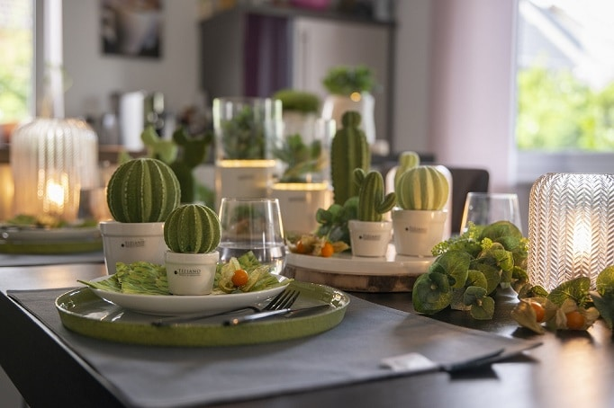 Tischdeko mit Kakteen: Mein kleiner grüner Kaktus