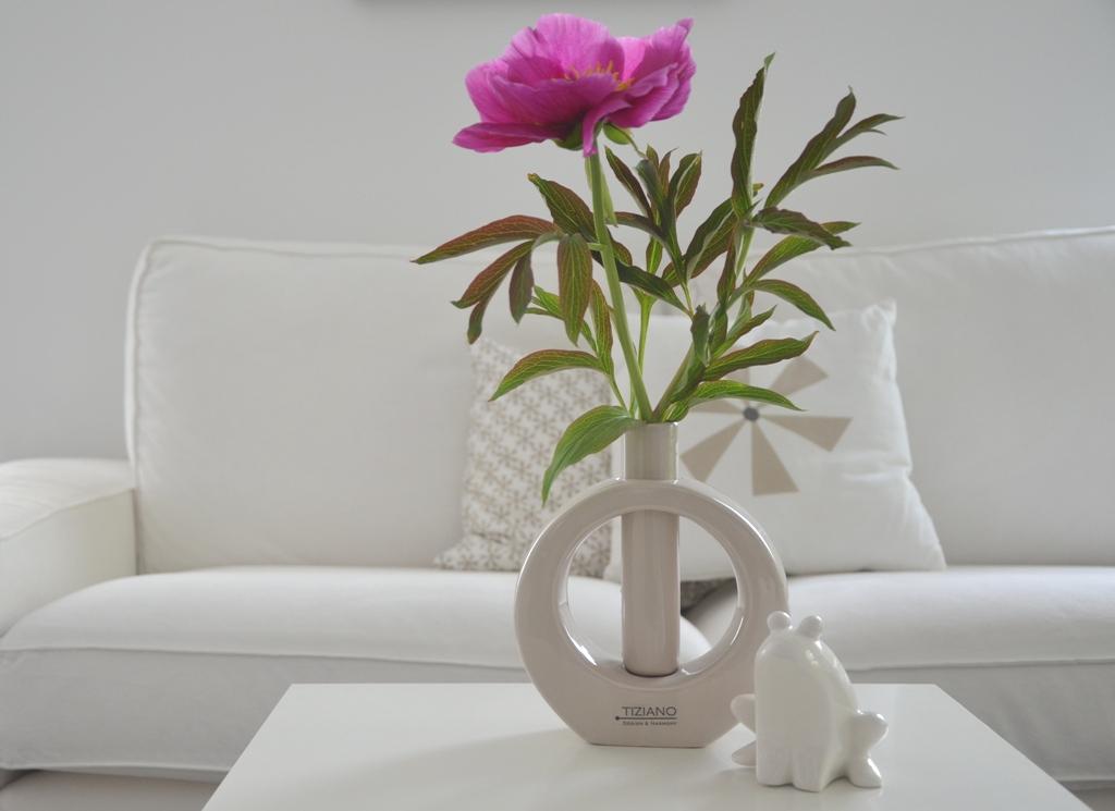pfingstrosen vom garten ins wohnzimmer tiziano. Black Bedroom Furniture Sets. Home Design Ideas