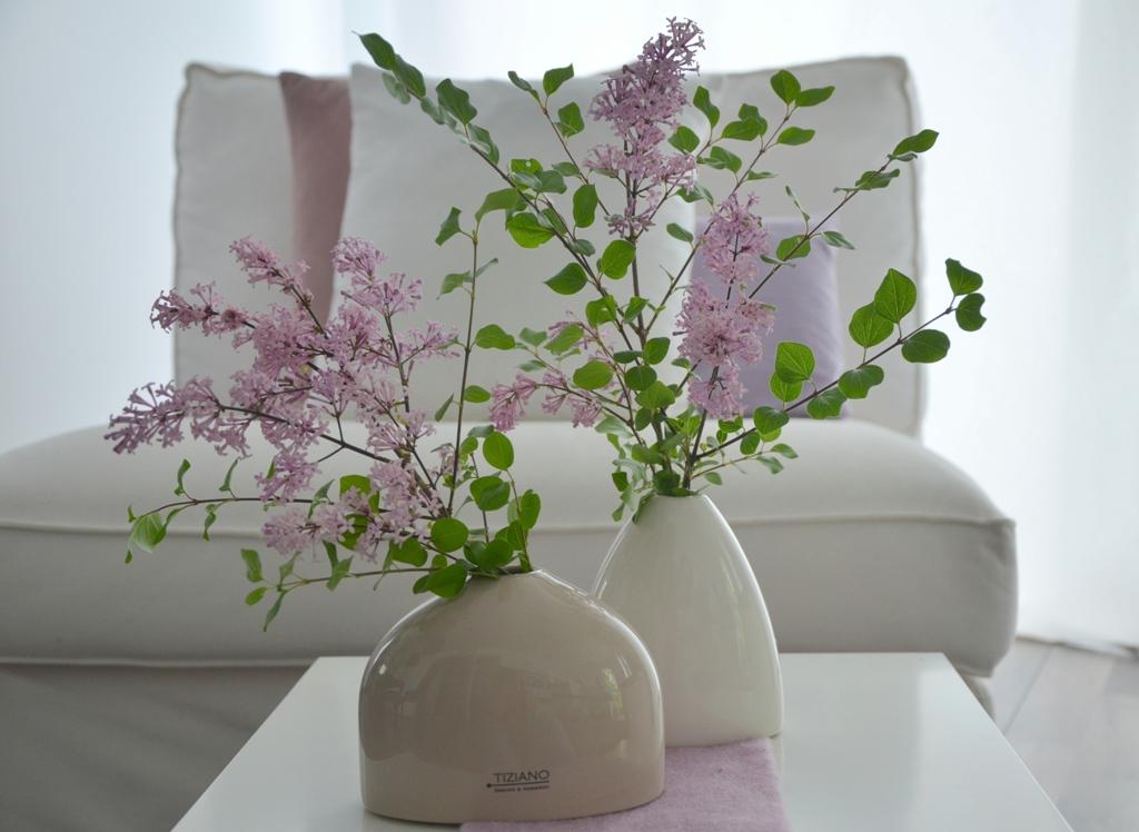 flieder im k bel flieder f r k bel flieder superba gr. Black Bedroom Furniture Sets. Home Design Ideas
