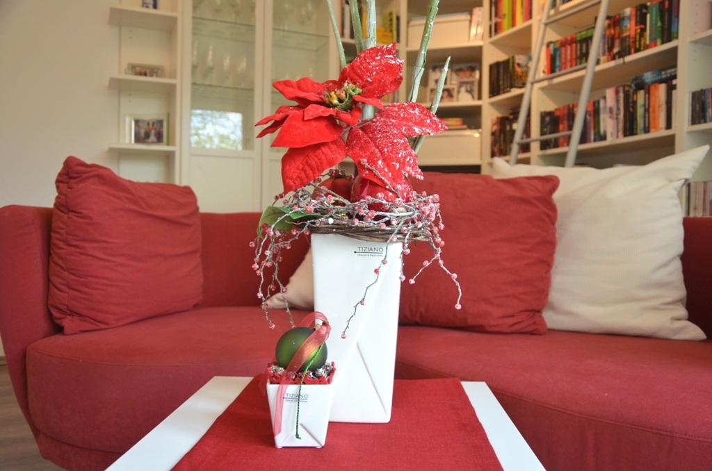 weihnachtssterne als adventsdeko tiziano. Black Bedroom Furniture Sets. Home Design Ideas