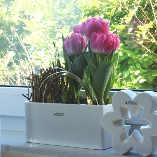 Frühlingsdeko für die Fensterbank mit Tulpen