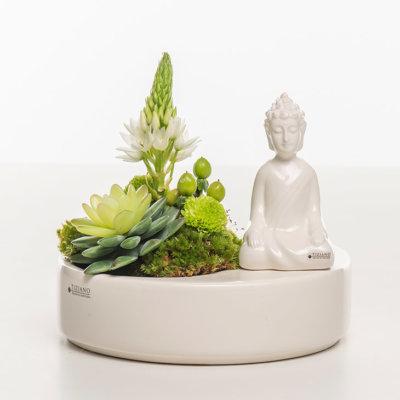 Zena Schale mit Shiva