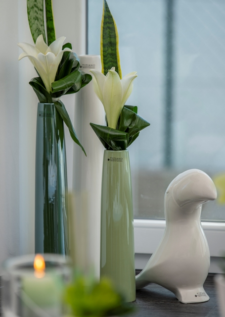 Urban Jungle_Wohnen mit Blumen und Pflanzen_Limea