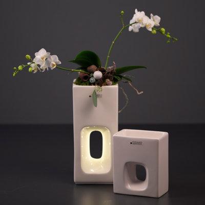 Quadro Pflanzgefäß Orchidee hoch und flach