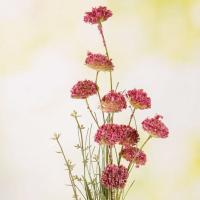 Sommerblümchen rosa Vase