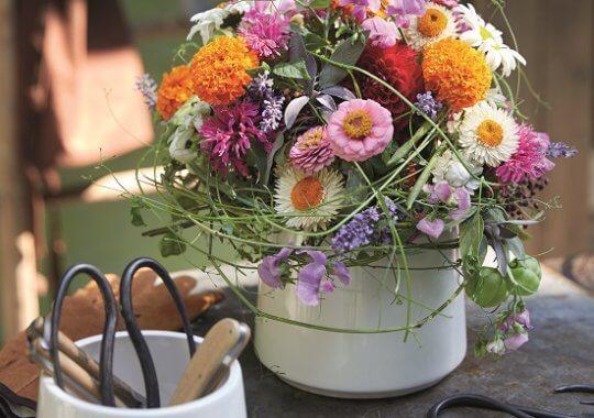 Sommerblumen in der Vase