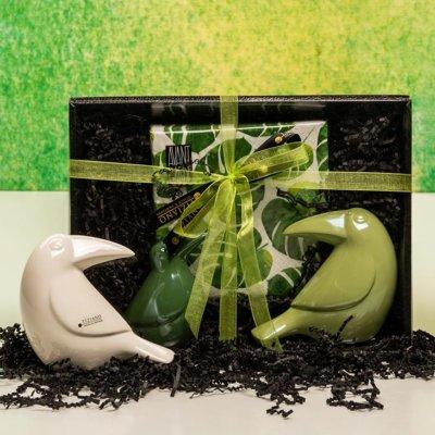 Vincenz Tukan grün Geschenkbox