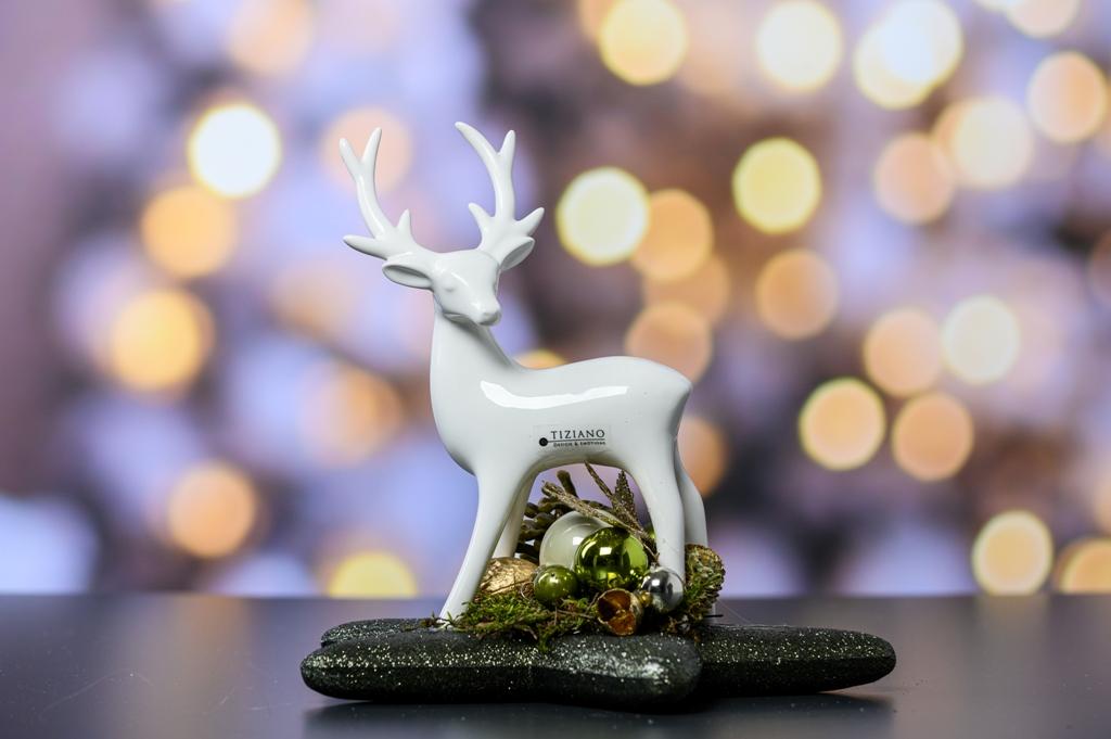 Hirsch Deko zu Weihnachten auf Stern