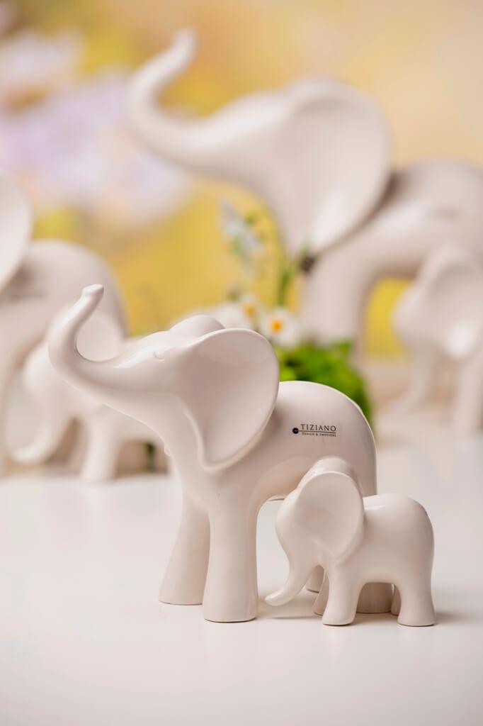 Elefant Leon mit Baby