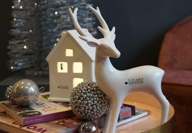 LED Beleuchtung zu Weihnachten mit Hirsch Riola