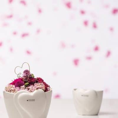 Blumentopf Belvina creme