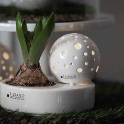 Schale Zena mit Lichtkugel Padova LED