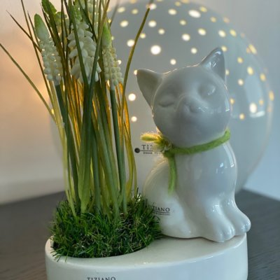 Dekofigur Katze Sadira sitzend dekoriert gruen