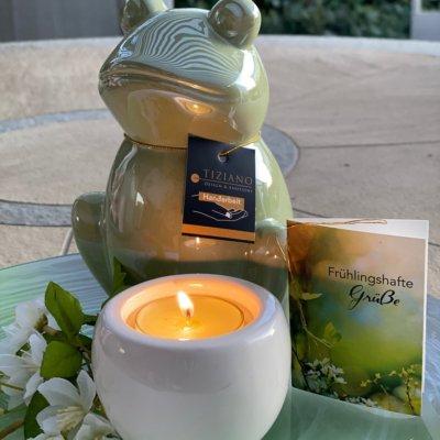 Dekoset Dekofigur Frosch Frolo mit Teelicht Blume und Karte