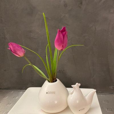 Dekoset Dekoteller Sendina mit Vitara Tulpen und Miolino