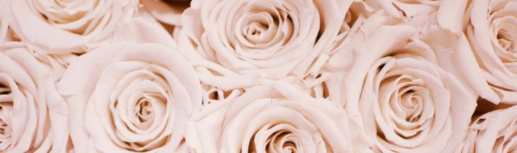 Infinity Rosen mit TIZIANO Keramik