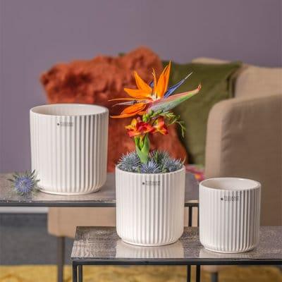 Blumentopf Galla creme-weiß