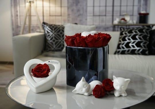 Infinity Rosen als Geschenk
