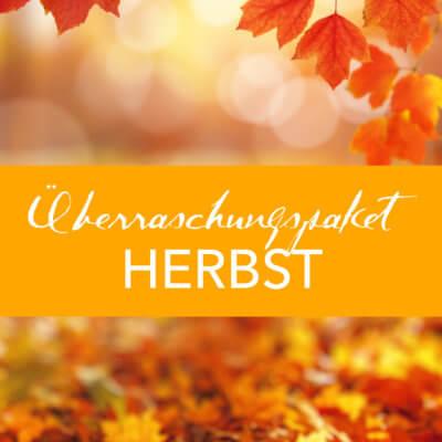 Überraschungspaket Herbst 29 Euro Einzelteile und Muster