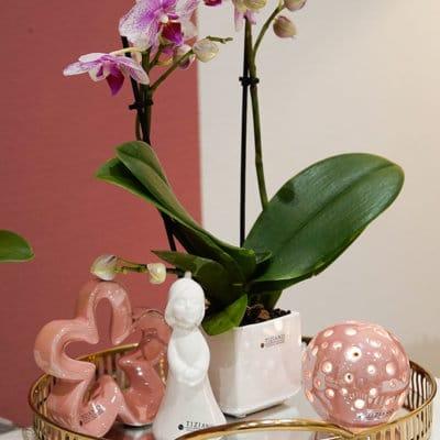 Dekofigur Blumenfee Lilly gerade weiß-creme
