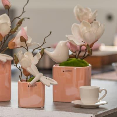 Blumentopf Crosia rosa