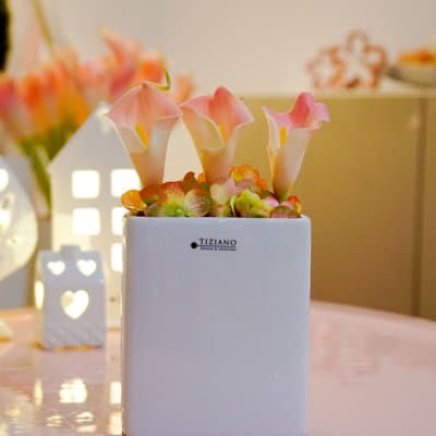 Dekoset Pflanzgefäß flach Crosia 12 weiß-creme dekoriert mit Calla rosa