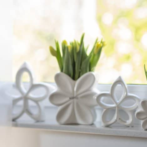 Tulpenliebe: Frühlingsfrische Dekoideen mit Tulpen