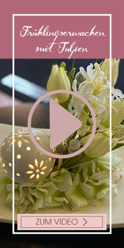 Placeholder Tulpenfest: Video