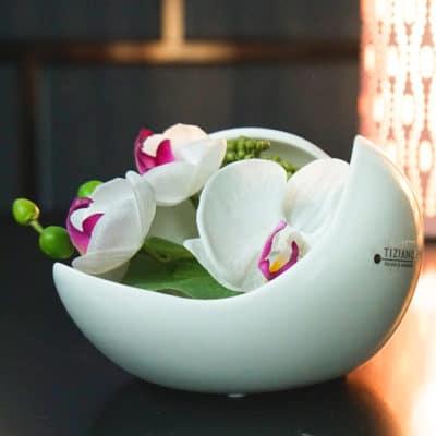 Dekoset Schale Porto 16 weiß-creme+Orchidee weiß-lila