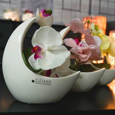 Dekoset Schale Selene 16 weiß-creme mit Orchidee