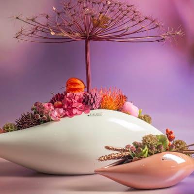 Schale Pavona rosa
