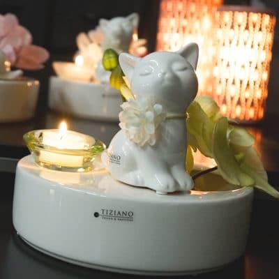 Dekoset Schale Zena mit Glas Trixy und Orchidee