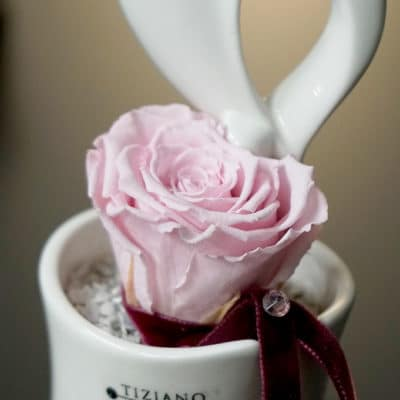 Dekoset Infinity Rosen rosa in Mini Blumentopf Arcobello und Herz Stecker Vida