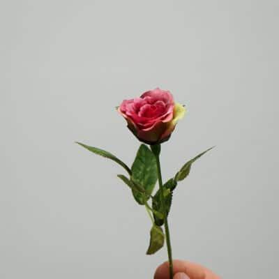 Deko Rose pink-grün