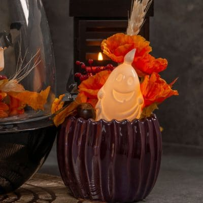 Dekoset Blumentopf Cavita red plum mit Herbstdeko